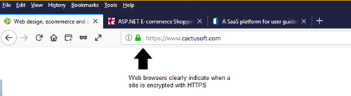 HTTPS in action